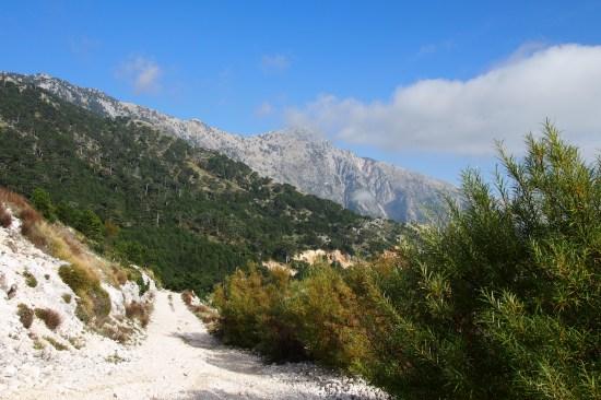 Walking in Llagora