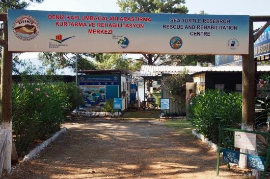 Sea Turtle Research Rescue and Rehabilitation Centre